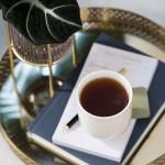 Чашка для черного чая 0,24 л Tea Passion Villeroy & Boch