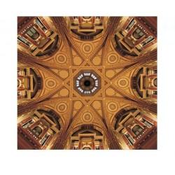 Художественные потолки Arch 8