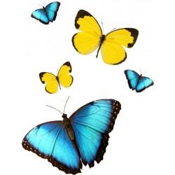 Художні стелі Метелики Butterfly 30