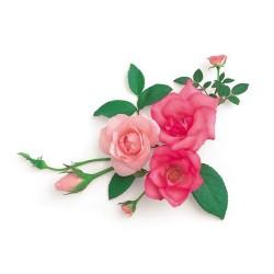 Художні стелі Квіти Flower 11