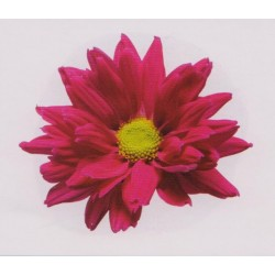 Художні стелі Квіти Flower 25