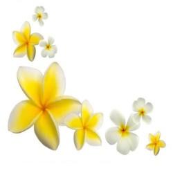 Художні стелі Квіти Flower 34