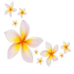 Художні стелі Квіти Flower 35